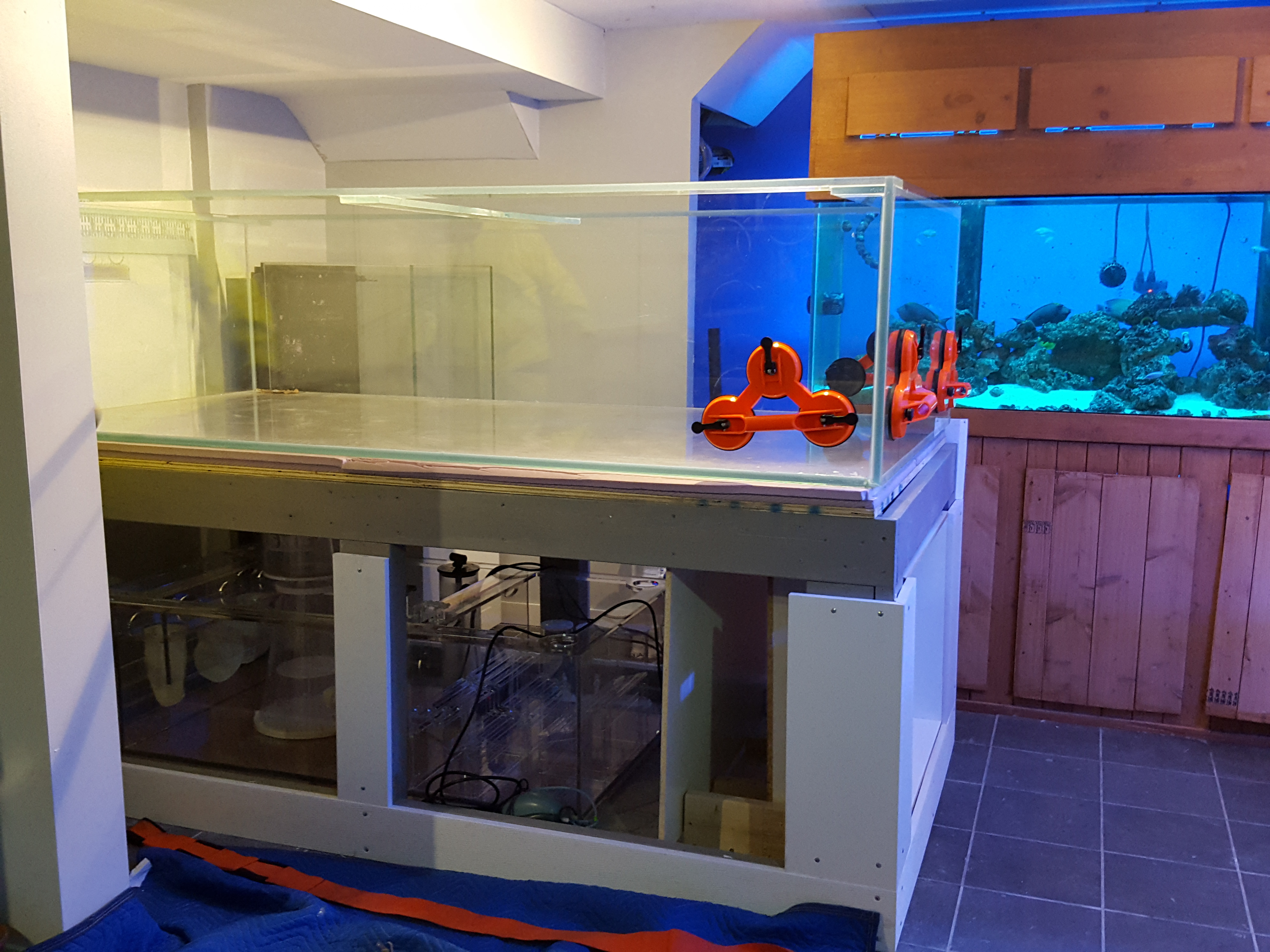 1000 pounds fish-tank